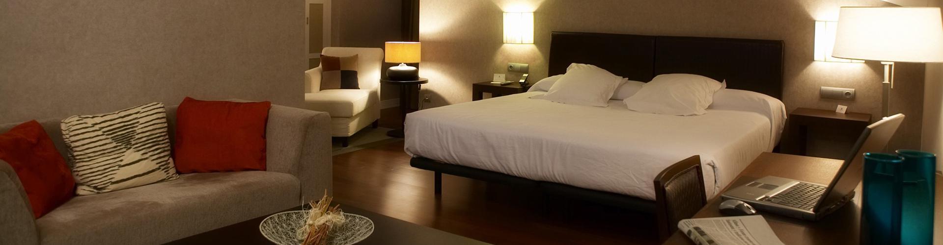 HOTEL BALNEARIO VILLA DE OLMEDO (5)