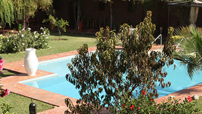 Handi Oasis. The garden.