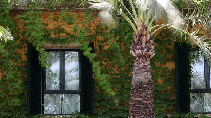 Hotel Jardín Milenio_2748-Recorte-LOW para principal